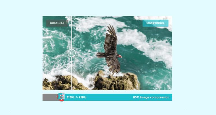 Velocizzare un sito WordPress con l'ottimizzazione delle immagini